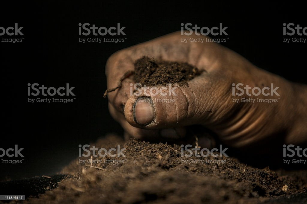 land and living royalty-free stock photo
