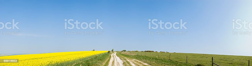 Land, earth, crops, sky royalty-free stock photo