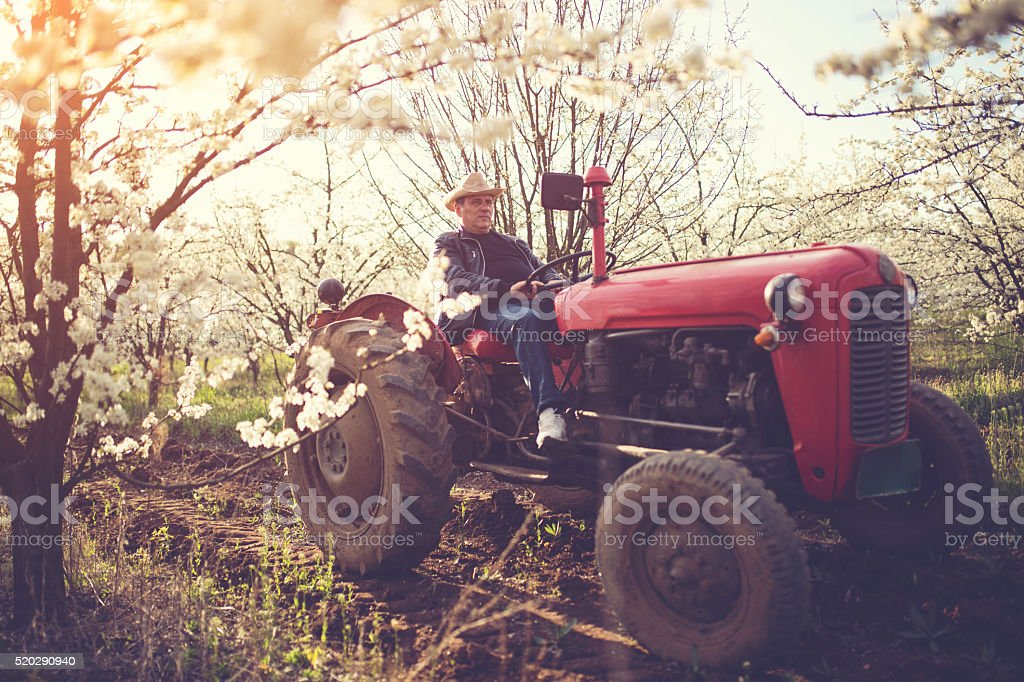 Land owner driving a tractor stock photo