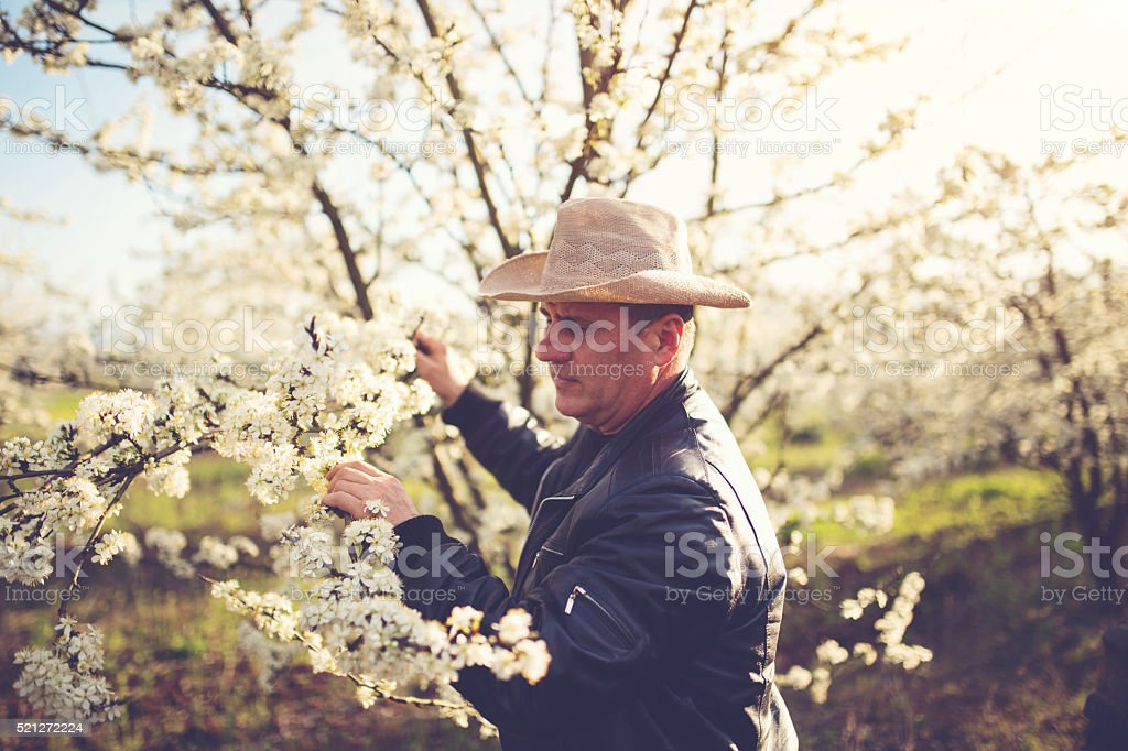 Land owner touching a tree stock photo