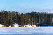 land scape of the frozen lake and forest