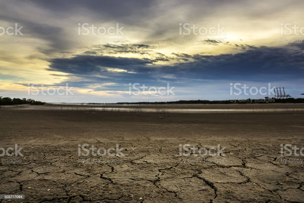 Land with dry and cracked ground. Desert stock photo