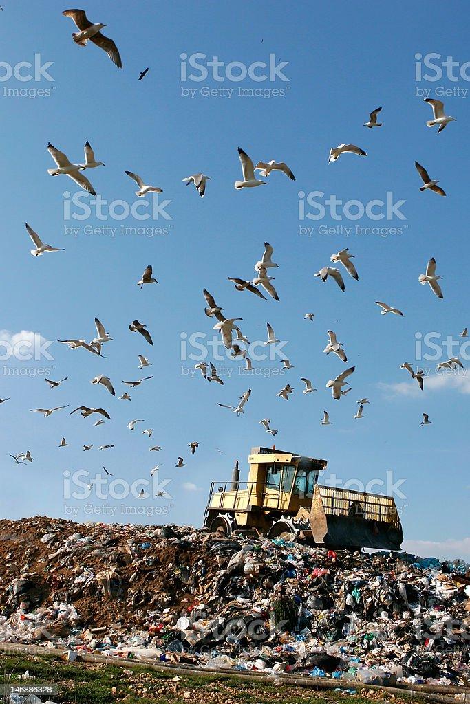 Landfill Working stock photo