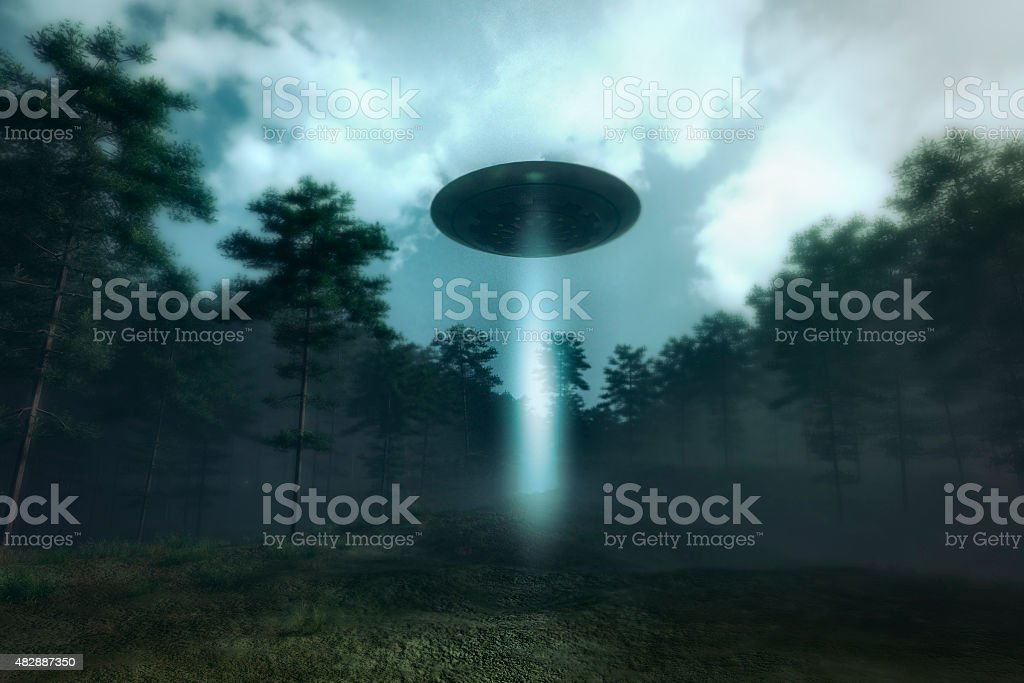 UFO landing in the forest meadow stock photo