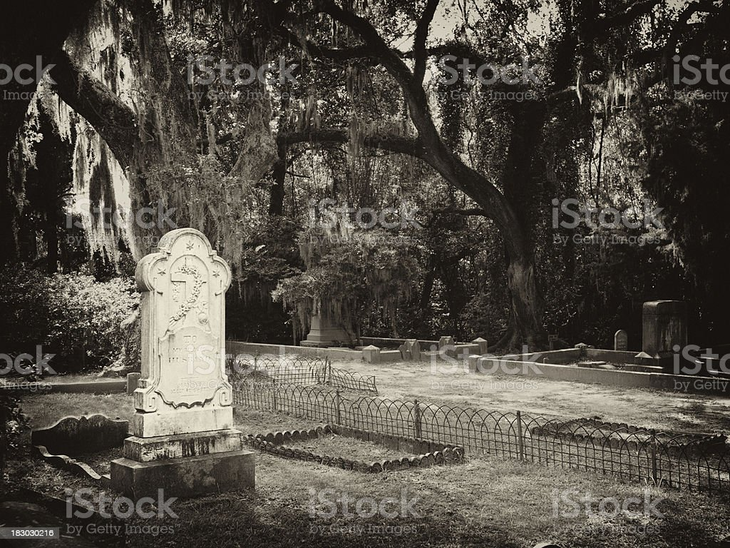 landmark cemetery in savannah stock photo