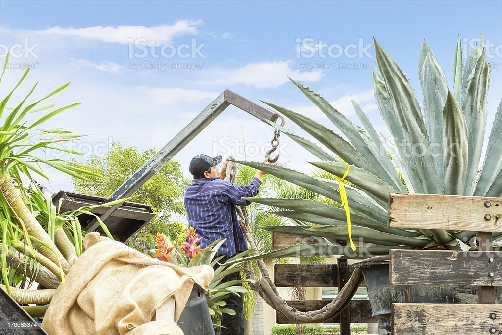 Landscaing truck with plants royalty-free stock photo