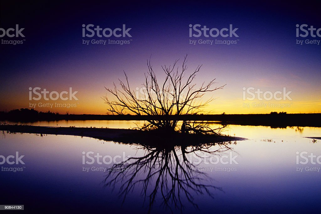 landscape abstract silhouette lake reflection tree royalty-free stock photo