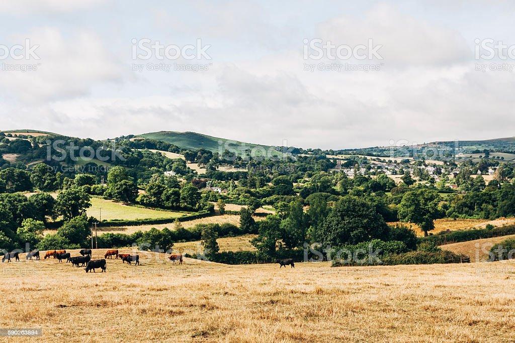Landscape around Chagford town in Dartmoor, Devon, England stock photo