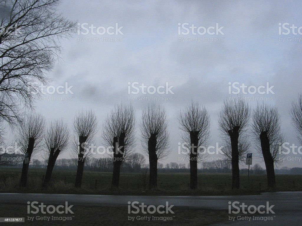 Landscape at F?hrmanns Sand, Wedel, Germany stock photo