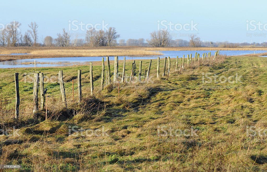 Landscape at Havel River with meadow (Germany) stock photo