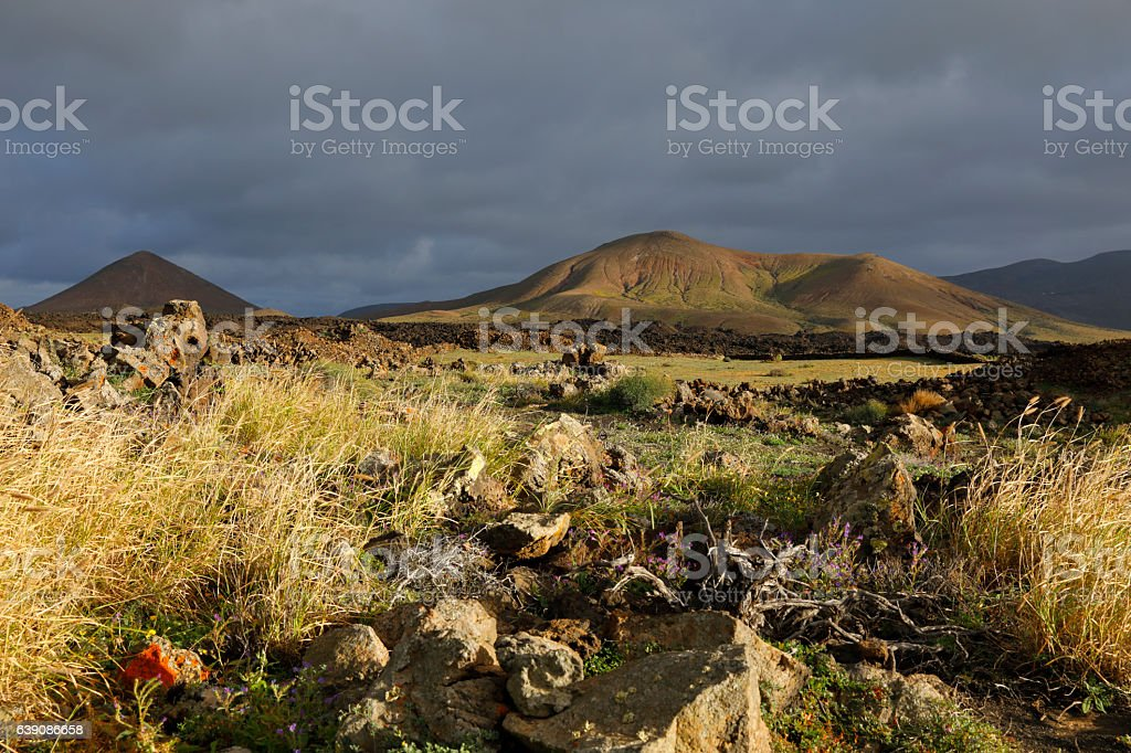 Landscape at Lanzarote, Spain stock photo