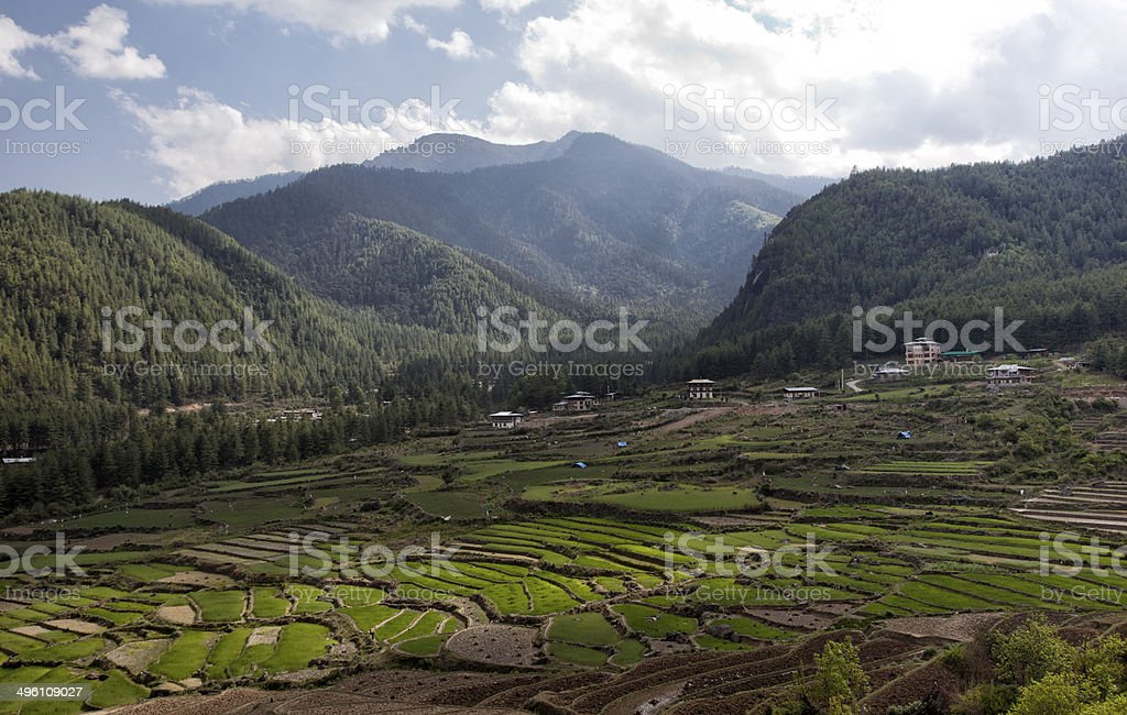 Landscape at Paro, Bhutan stock photo
