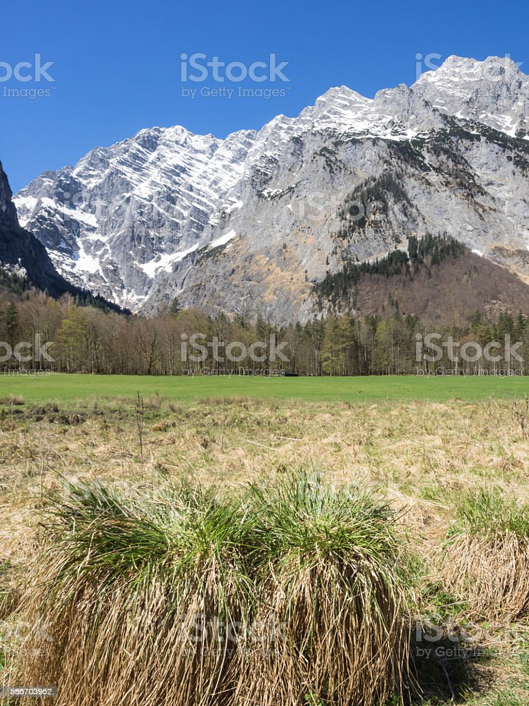 Landscape at the Bavarian Alps, Germany stock photo