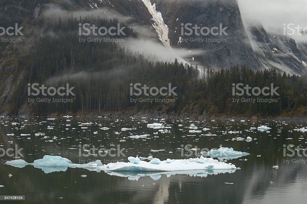 Landscape at Tracy Arm Fjords in Alaska United States stock photo