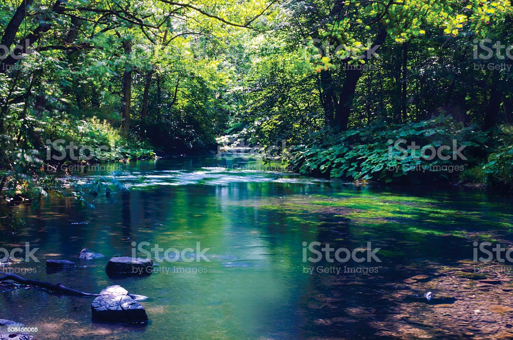 Landscape background with a river and trees stock photo