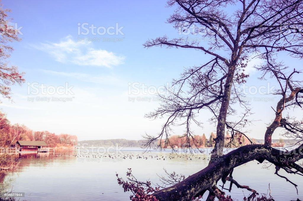 landscape by lake Starnberg in Bavaria in autumn stock photo