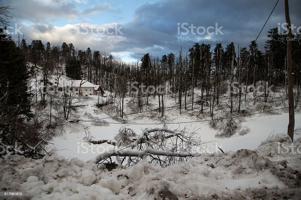 Landscape damaged from an extreme icestorm stock photo