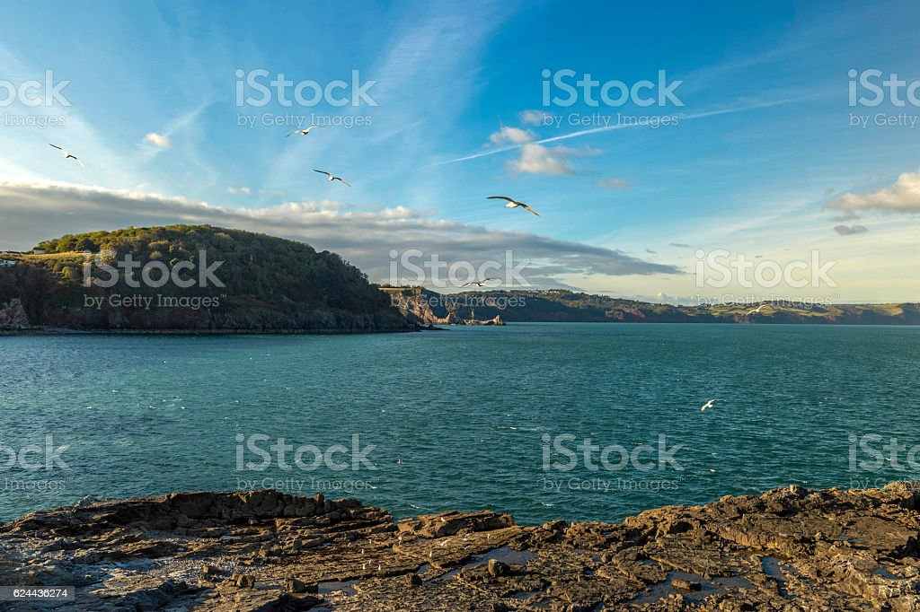 Landscape depicting Lyme Bay and Babbacombe Bay stock photo