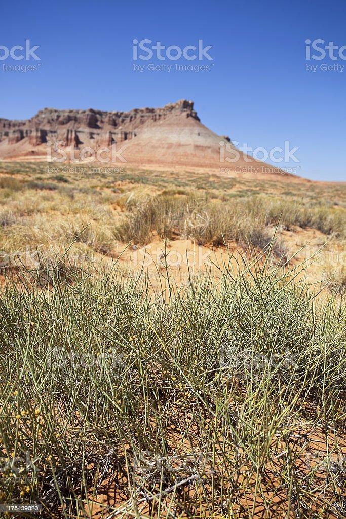 landscape desert badlands stock photo