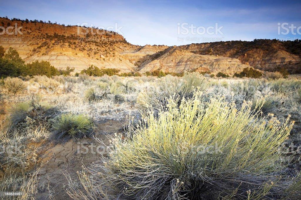 landscape desert sunset stock photo
