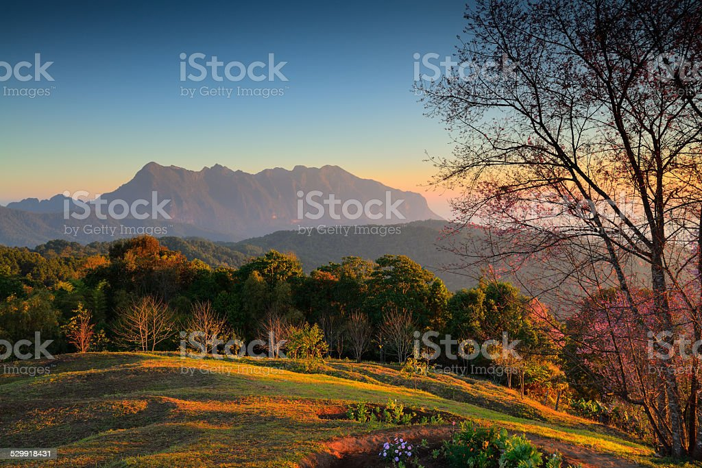 Landscape  Doi Luang Chiang Dao. Thailand stock photo