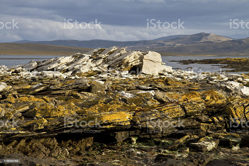 Landscape Falkland Islands royalty-free stock photo