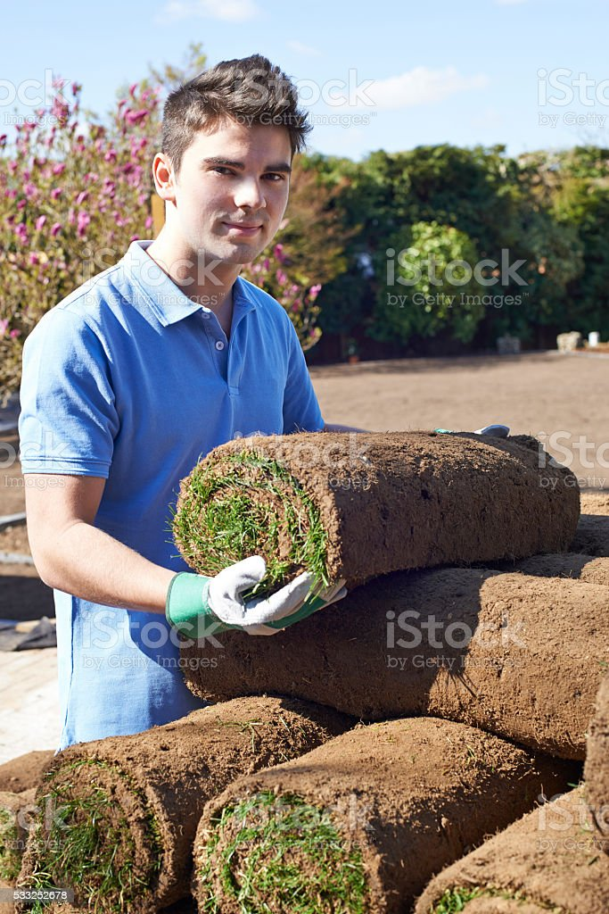 Landscape Gardener Laying Turf For New Lawn stock photo