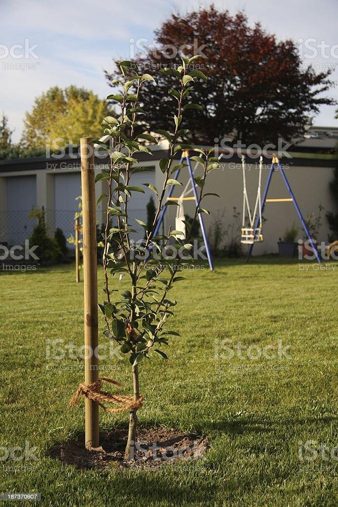landscape gardening stock photo