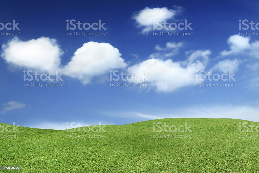 Landscape - green field royalty-free stock photo