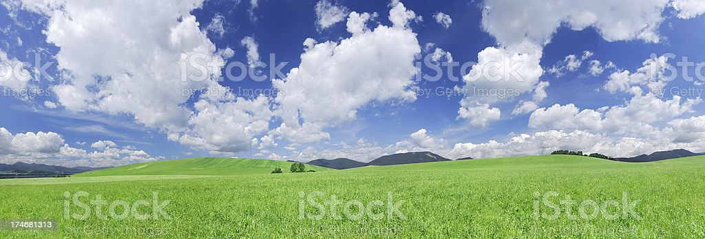 Landscape - Green fields, blue sky and white clouds royalty-free stock photo