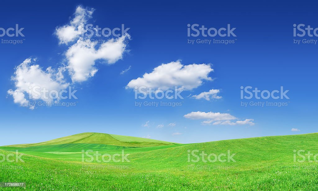 Landscape - green filed and the blue sky (XXXL size) royalty-free stock photo