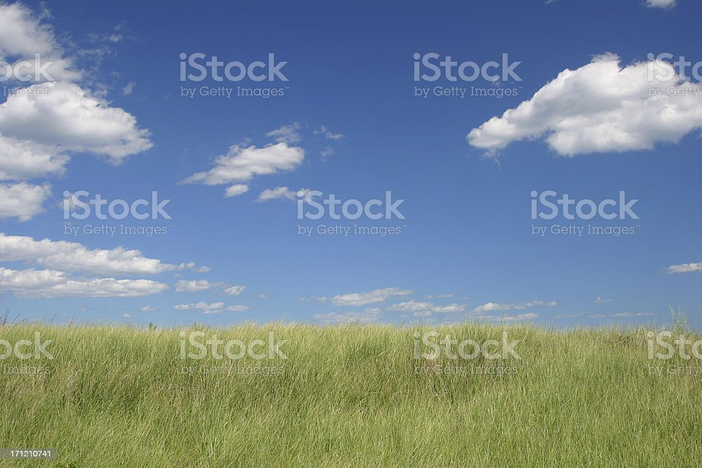 Landscape Hill Grass Sky Puffy White Clouds Horizon Sunny stock photo