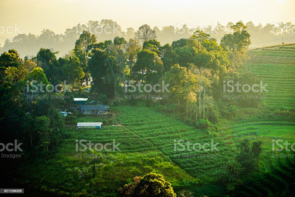 Landscape house in fog hill sunset beautiful stock photo