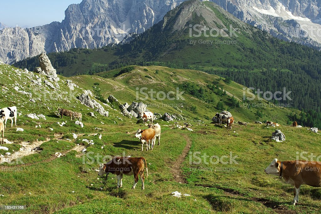Landscape Image with mountains royalty-free stock photo