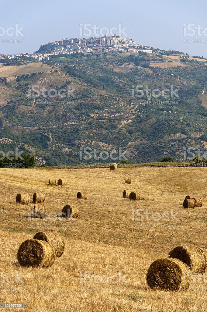 Landscape in Basilicata (Italy) near Acerenza at summer royalty-free stock photo
