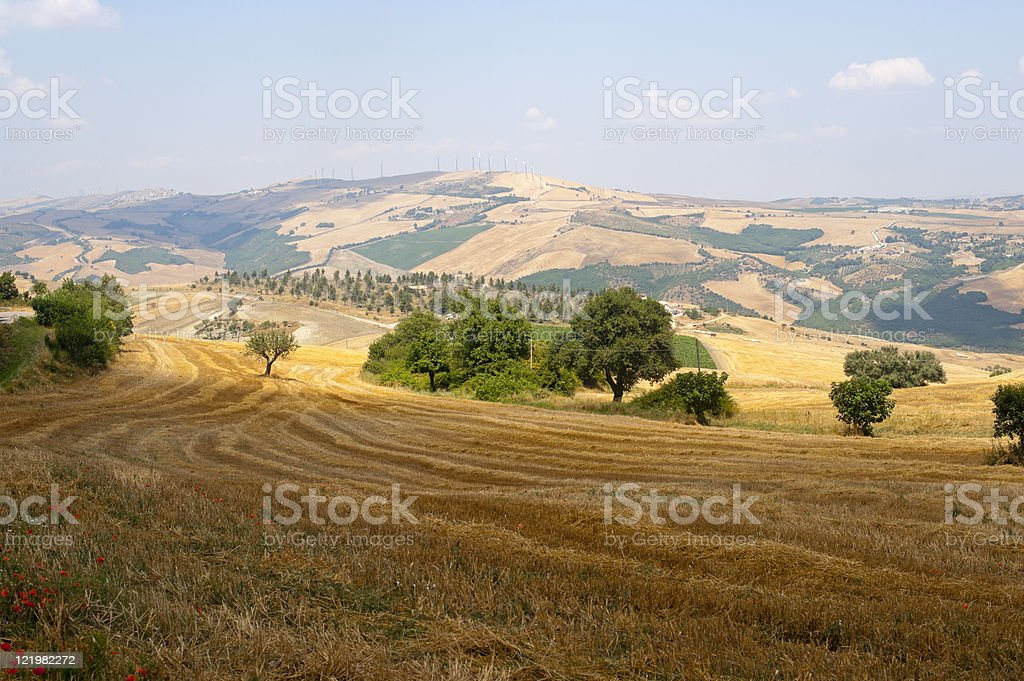 Landscape in Basilicata (Italy) near Acerenza at summer royalty-free stock photo