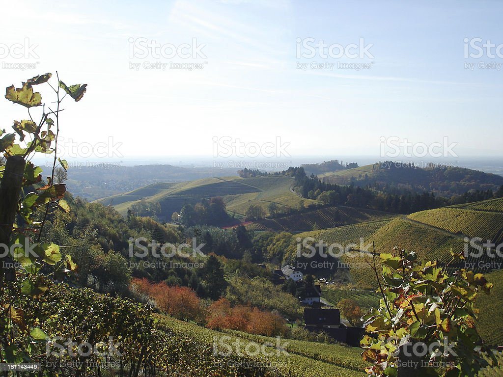 landscape in Black Forest royalty-free stock photo