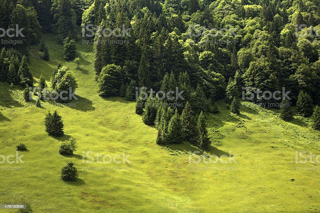 Landscape in canton of Obwalden. Switzerland stock photo