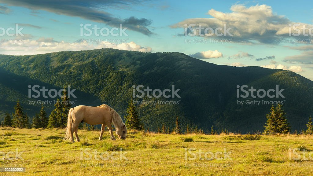 Landscape in Carpathian mountains and the blue sky with clouds. stock photo