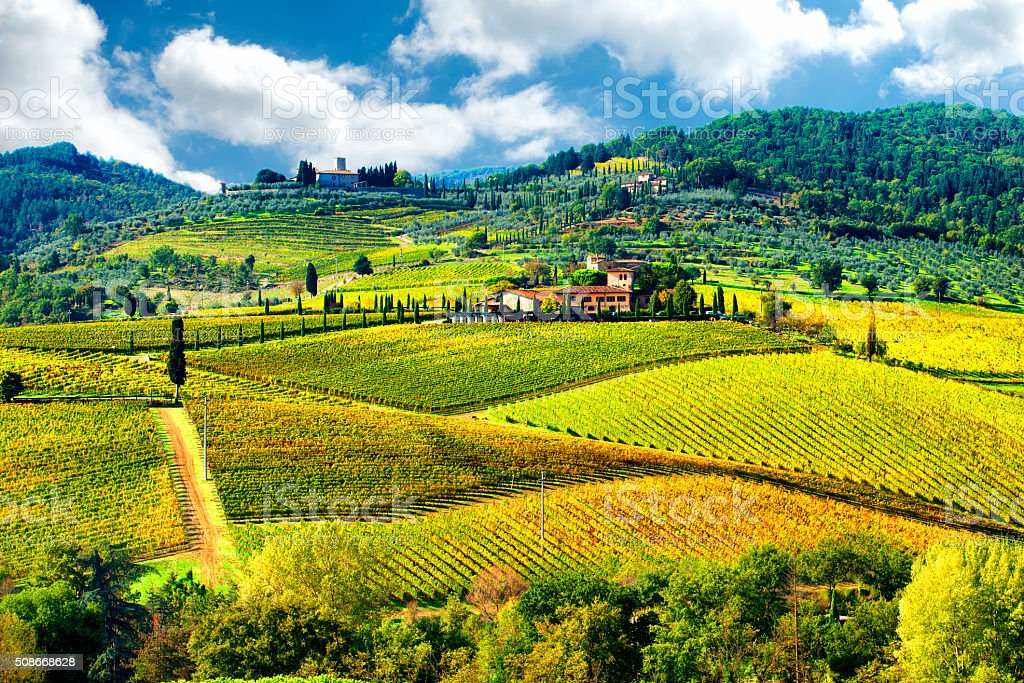 Landscape in Chianti region, Tuscany, Italy stock photo