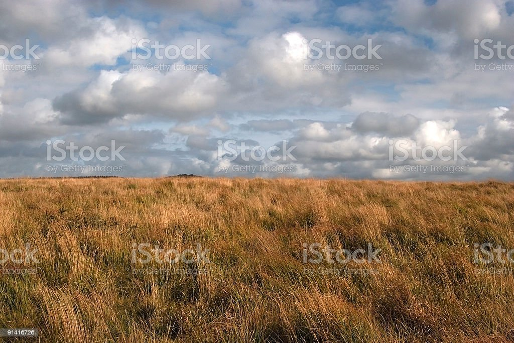 Landscape in Devon. Clouds and dry grass. royalty-free stock photo