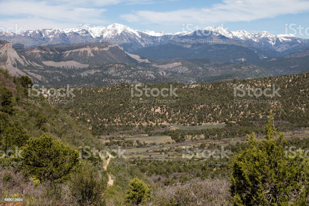 Landscape in Durango, Colorado - Mountains, pinion pines and meadow stock photo