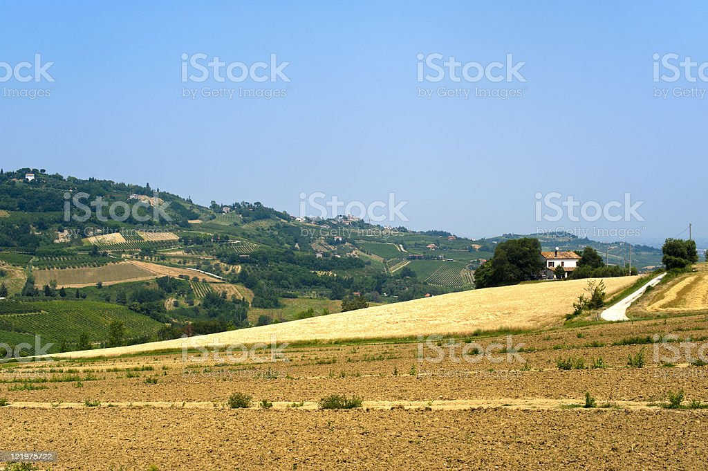 Landscape in Emilia Romagna (Italy) at summer stock photo