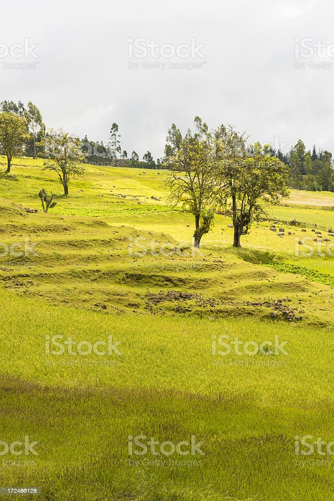 Landscape in Ethiopia stock photo