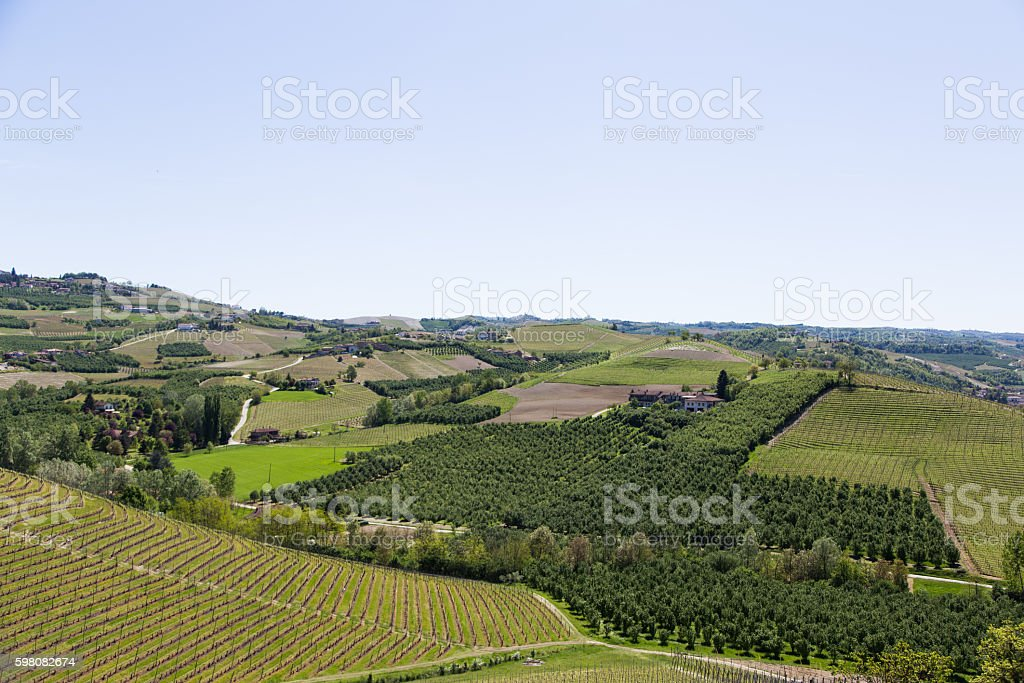 Landscape in Langhe region, Italy stock photo