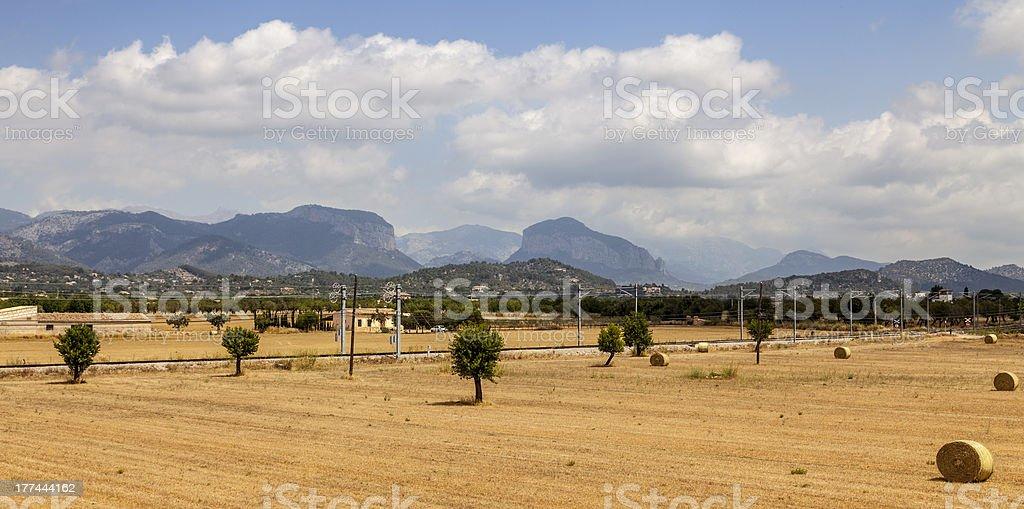 Landscape in Mallorca stock photo