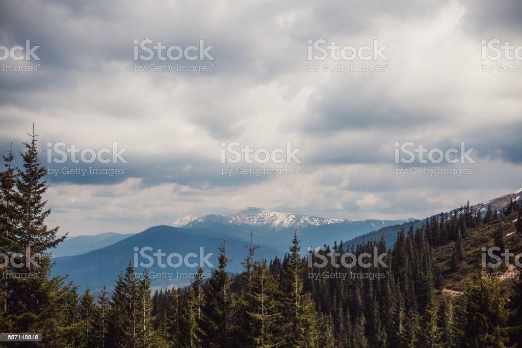 landscape in mountains Carpathians Ukraine stock photo