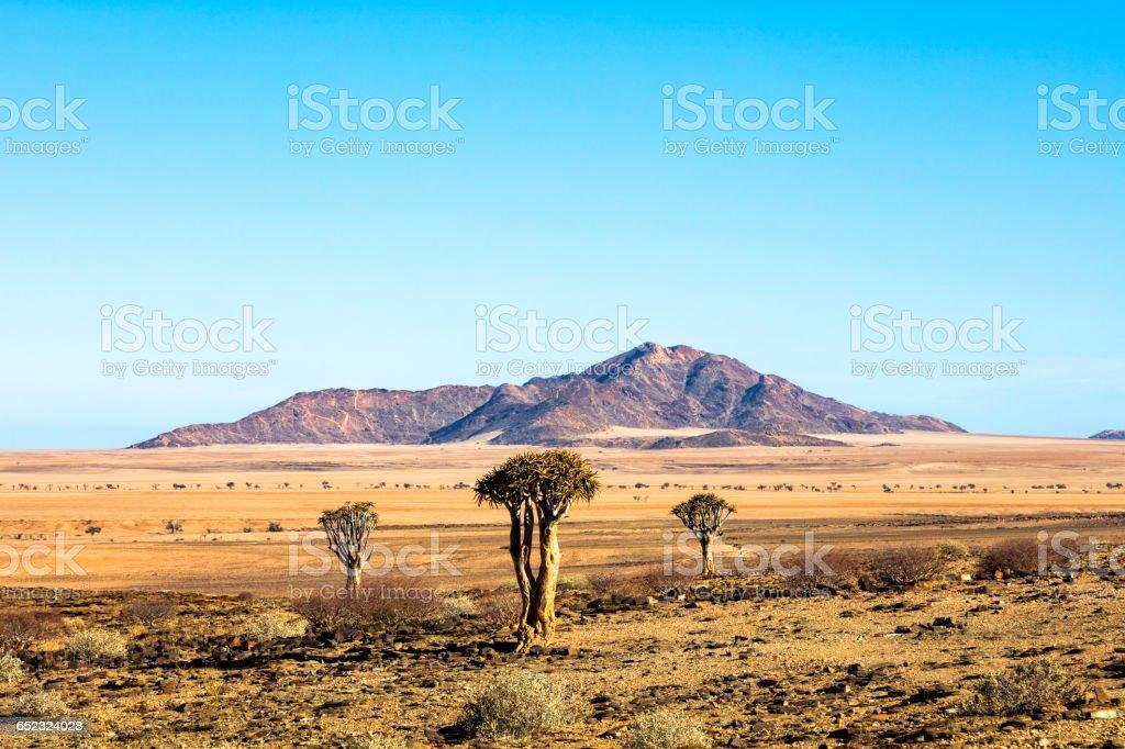 Landscape in Namibia stock photo