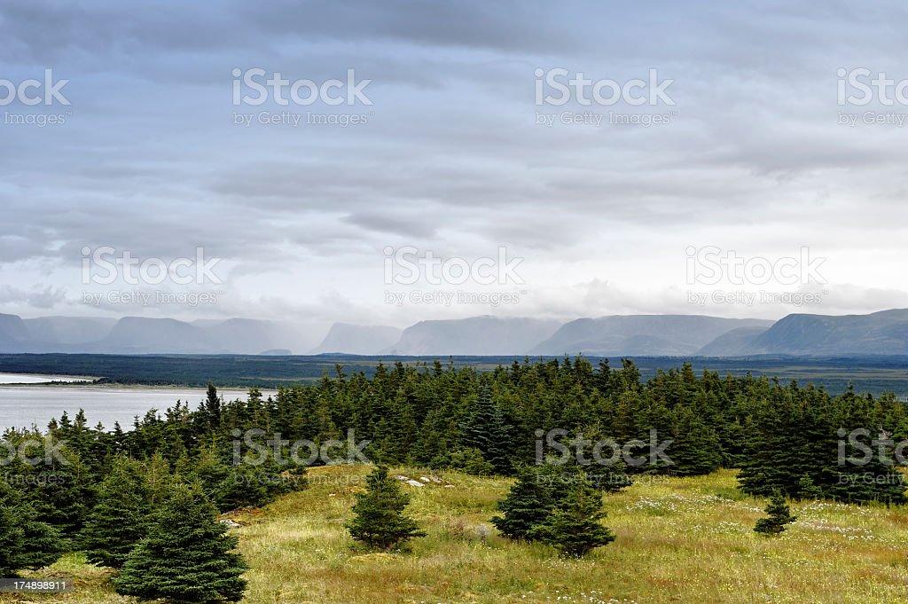 Landscape in Newfoundland stock photo