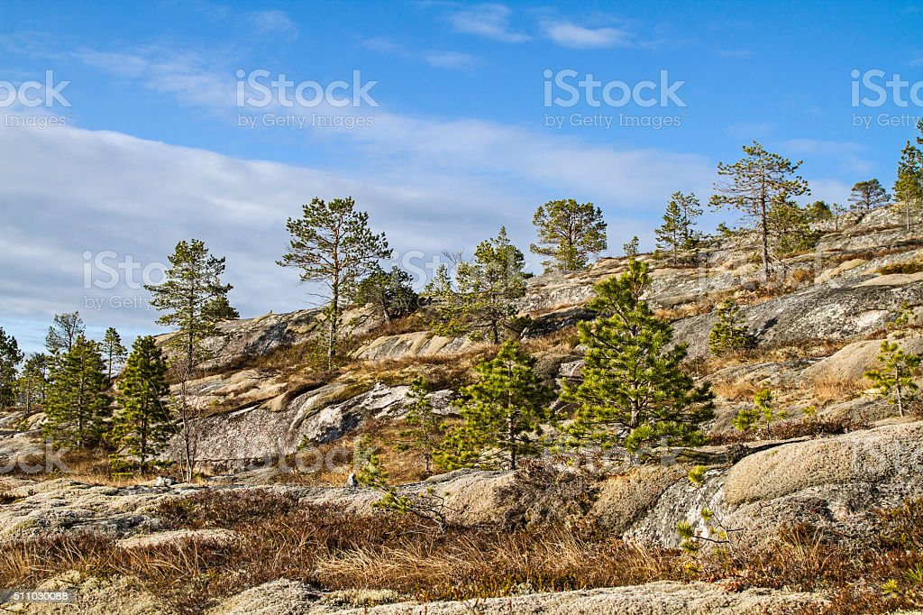 Landscape in northern Norway stock photo